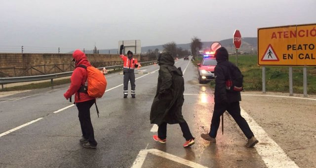 Peregrinos en la Javierada 2017 en un tramo de la Ribera