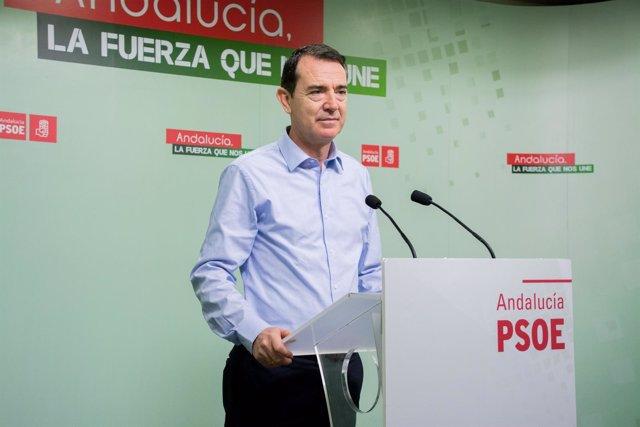 El senador del PSOE de Almería, Juan Carlos Pérez Navas, en rueda de prensa