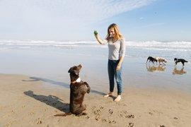 Una startup valenciana lanza un geolocalizador de mascotas que adiestra con ultrasonidos