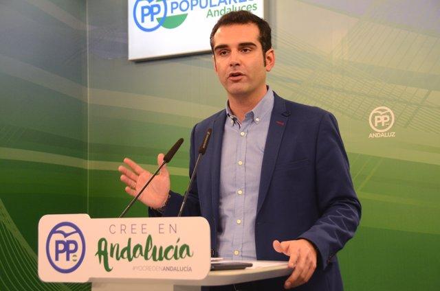 Presidente del Comité Organizador del Congreso del PP-A, Ramón Fernández Pacheco