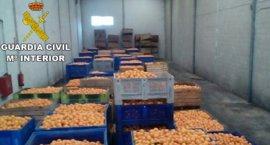 Detenidas tres personas e investigadas cuatro más por el robo de 150.000 kilos de naranjas en l'Horta sud