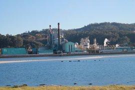 Ence actualiza su plan de inversiones y deja a Pontevedra sin la planta de biomasa
