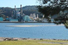 Ence dice que la planta de biomasa en Pontevedra queda fuera del plan actual por plazos