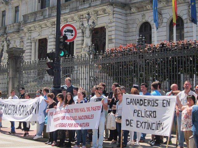 Protesta ganaderos.