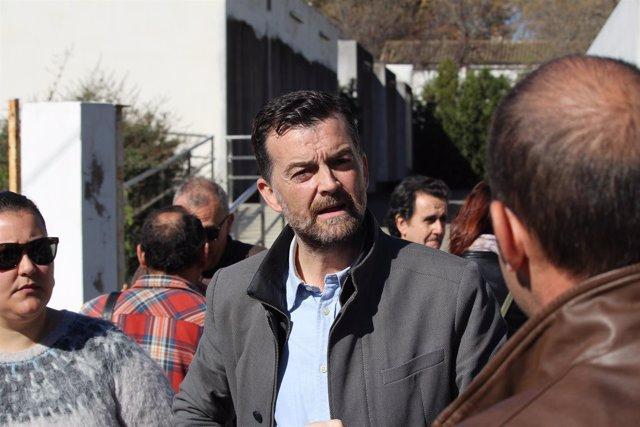 El coordinador general de Izquierda Unida en Andalucía, Antonio Maíllo.