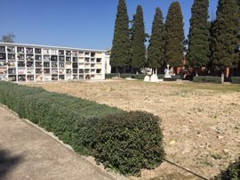 """Detectan en el cementerio de Utrera acumulaciones óseas indicio de una """"posible fosa común"""" de la Guerra Civil"""