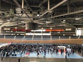 Más de 2.000 personas acuden a la Feria de la Ocupación de PalmaActiva durante la primera jornada matinal
