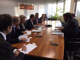 El director general de Salud de la Comisión Europea pide incrementar el muestreo para detectar casos de 'Xylella'