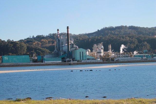 Fábrica de Ence en Lourizán, en la ría de Pontevedra