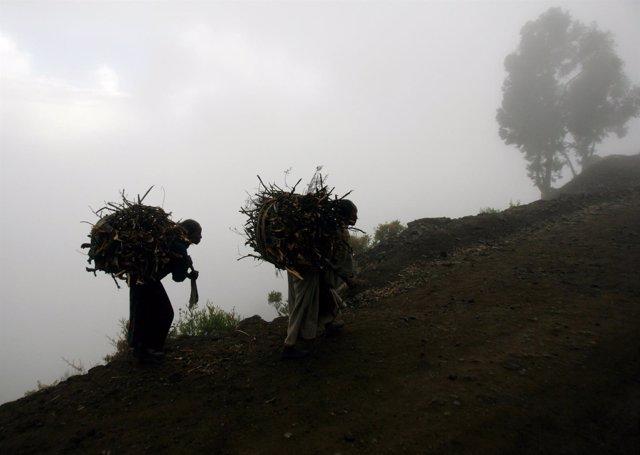 Varias mujeres cargan con madera en el norte de Etiopía.