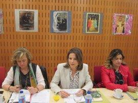 La Junta apela a la complicidad de los medios de comunicación para luchar contra la violencia de género