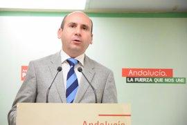"""PSOE-A sostiene que De la Torre """"ha desautorizado"""" a Bendodo, al que """"no quiere ni hoy ni mañana"""" como alcalde de Málaga"""