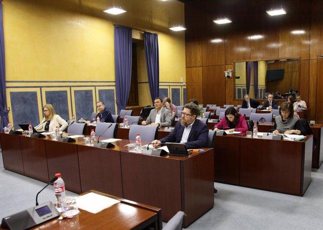 Parlamentarios en la comisión de Empleo
