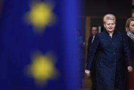 Lituania apoya a Tusk y advierte a Polonia de que la UE no será rehén de políticas nacionales