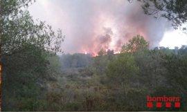 Un estudio pronostica que el cambio climático aumentará el riesgo de incendios