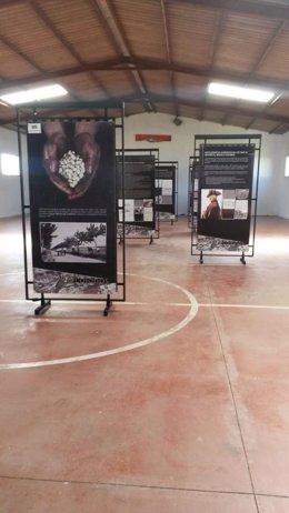 Exposicion 'Colonos' de la Junta de Extremadura.