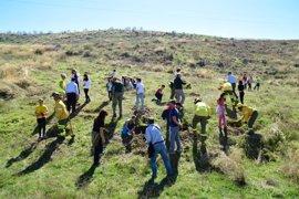 Escolares de Cájar (Granada) colaboran en una reforestación para concienciar sobre los efectos de los incendios