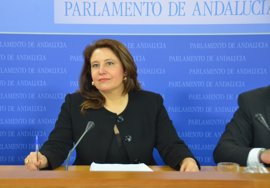 """PP-A exige a Durán que aclare """"si ha ocultado a la comisión de investigación más escritos como el de Montes"""""""
