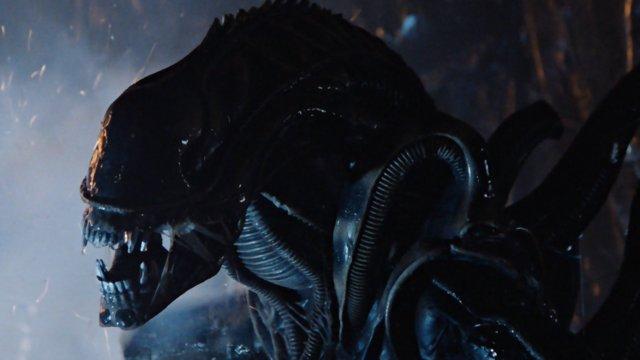 Un alien xenomorfo