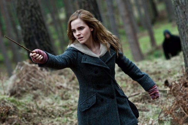 Hermione Granger, Harry Potter
