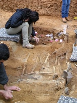 Exhumación Fosas Cazalla De La Sierra (Sevilla)