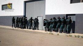 27 detenidos en Alicante por participar en una red empresarial que cultivaba y vendía drogas