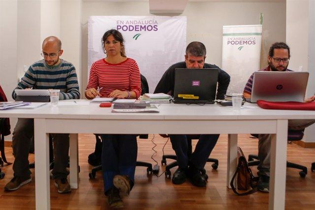 Reunión del Consejo Ciudadanos de Podemos Andalucía