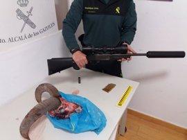 Denunciados dos cazadores furtivos tras abatir un muflón en Alcalá de los Gazules