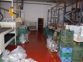 Detenidos en Almansa por robos en una fábrica de calzado y una biblioteca