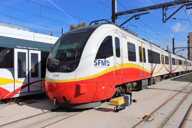 Trenes SFM, TIB, Transporte público