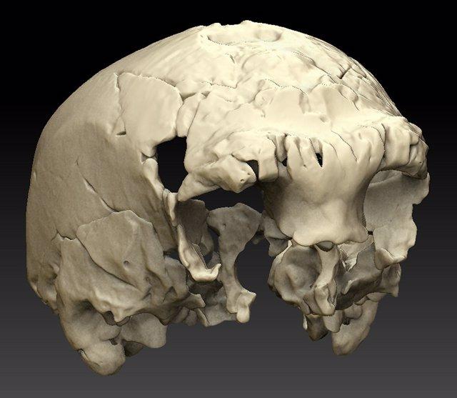 Descubren el fósil humano más occidental de Europa del Pleistoceno medio