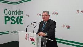 """El PSOE-A dice que, tras el dictamen sobre los cursos de formación, """"el PP-A tendrá que rendir cuentas"""""""