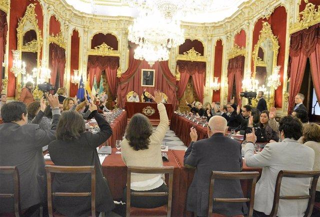 Pleno en la Diputación de Cádiz