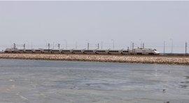 Renfe aumenta la oferta del servicio Alvia entre Cádiz y Madrid a partir de este jueves