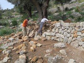 El Consell contrata a diez 'margers' y forestales desempleados para recuperación en Sa Coma de Tossals