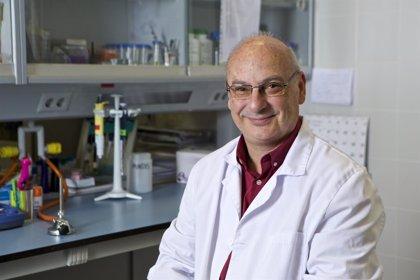 Fundación Lilly otorga sus Premios de Investigación Biomédica 2017 para reconocer la trayectoria científica