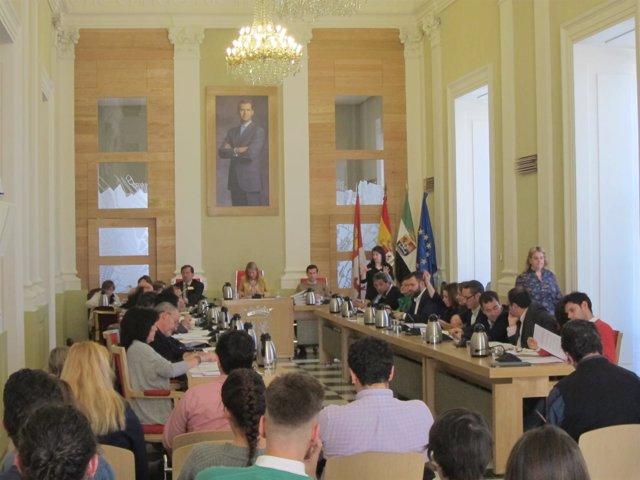 Pleno del Ayuntamiento de Cáceres del mes de marzo