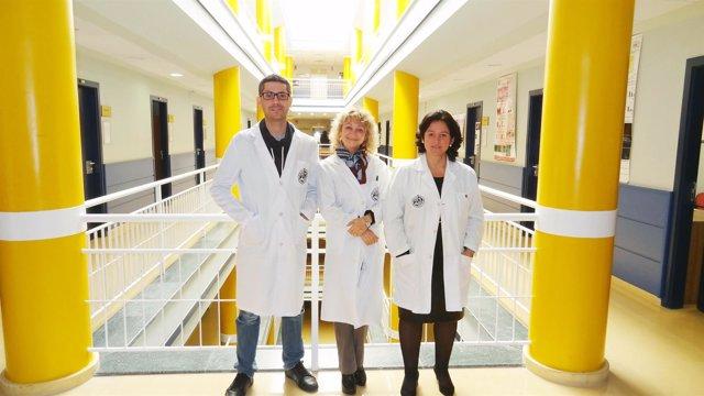 Equipo responsable de la investigación de la Universidad de Jaén