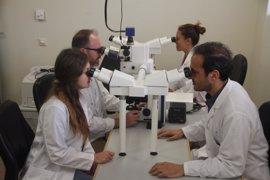 Hospital Santa Lucía lidera un proyecto para analizar la capacidad antitumoral de nuevos fármacos con respaldo europeo
