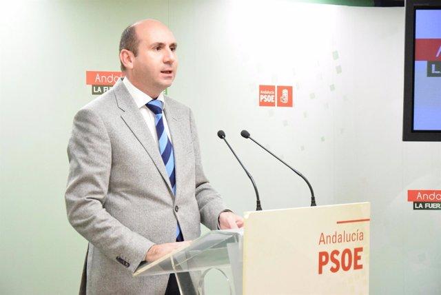 Conejo PSOE-A málaga rueda de prensa comparecencia socialista política instituc