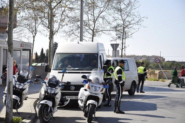 Policía Local de Palma