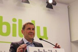 Otegi espera que España y Francia no obstaculicen el desarme definitivo de ETA y que se implique el Gobierno vasco