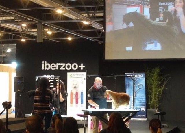 Iberzoo+Propet