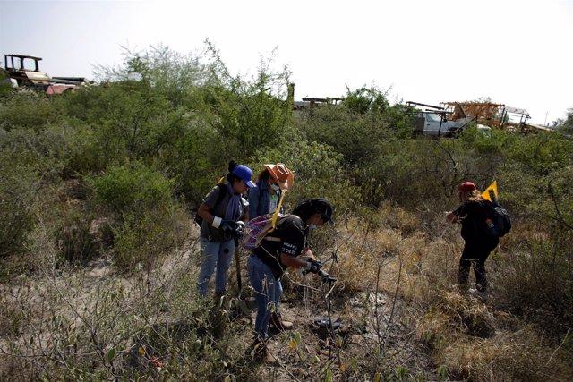 Un grupo de familiares de desaparecidos buscan a sus seres queridos en México