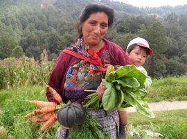 Laparra viaja la próxima semana a Guatemala para supervisar los programas de cooperación