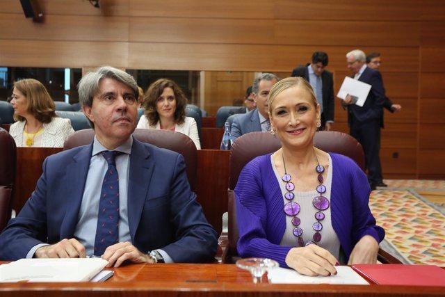 Ángel Garrido y Cristina Cifuentes en un pleno de la Asamblea de la Comunidad
