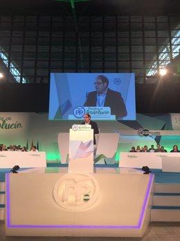 El presidente de ATA. Lorenzo Amor, en el Congreso del PP-A