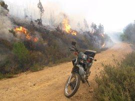 Diez detenidos o investigados en lo que va de año por provocar incendios forestales
