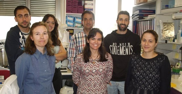 Investigadores del grupo del IBMCC.