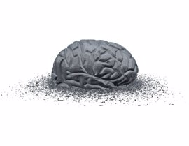 Descubren un gen responsable del envejecimiento cerebral